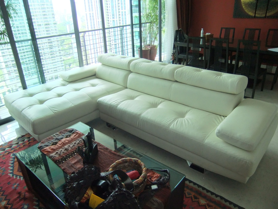 Wonderful Leather Sofa Singapore Image